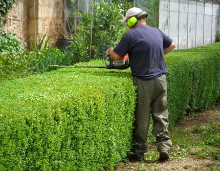 Servicio integral de mantenimiento de jardines y piscinas for Trabajo jardinero